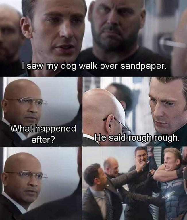 dog walked over Sandpaper